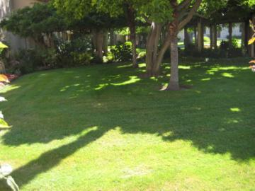 Mission Garden I